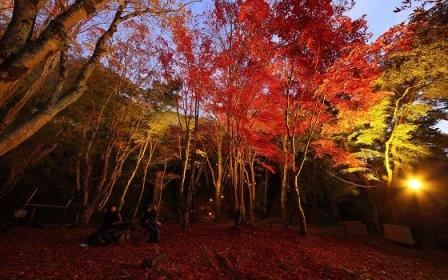 10笠置山自然公園
