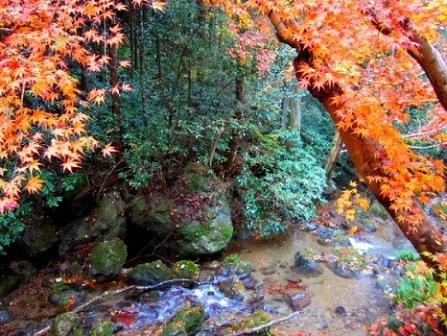 7黒山三滝