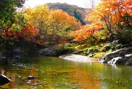 9嵐山渓谷