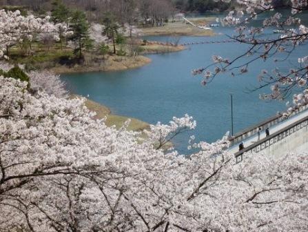 10大野ダム公園