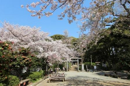 8源氏山公園