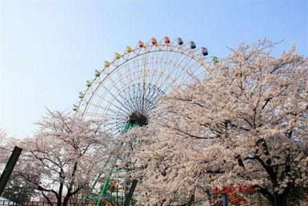 8華蔵寺公園